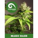 Mako Haze Kiwi Seeds