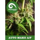 Auto Mako Kiwi Seeds