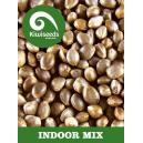 Indoor Mix Kiwi Seeds