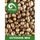 Outdoor Mix Kiwi Seeds