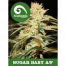 Sugar Baby Kiwi Seeds