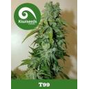 T99 Kiwi Seeds
