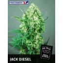 Jack Diesel Positronics Seeds