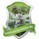 Autoflowering Outdoor Mix Royal Queen Seeds
