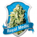 Royal Medic Royal Queen Seeds