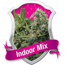 Indoor Mix Royal Queen Seeds