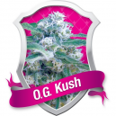 O.G. Kush Royal Queen Seeds