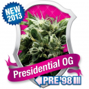 Presidential OG Royal Queen Seeds