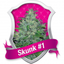 Skunk Royal Queen Seeds