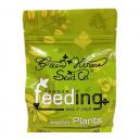 Powder Feeding Mother Plants - Grow