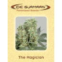 The Magician De Sjamaan Seeds