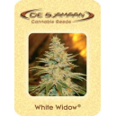 White Widow De Sjamaan Seeds