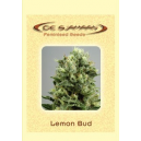 Lemon Bud De Sjamaan Seeds