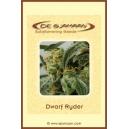 Auto Dwarf Ryder De Sjamaan Seeds