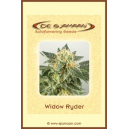 Auto Widow ryder De Sjamaan Seeds