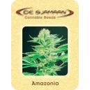 Amazonia De Sjamaan Seeds