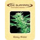 Easy Rider De Sjamaan Seeds