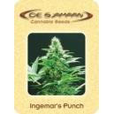 Ingemar´s Punch De Sjamaan Seeds