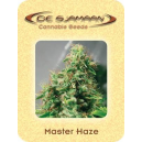 Master Haze De Sjamaan Seeds