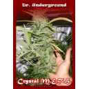 Crystal M.E.T.H. Dr.Underground Seeds