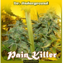 Pain Killer Dr.Underground Seeds