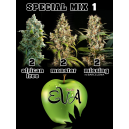 Special Mix 1 Eva Seeds