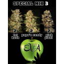 Special Mix 3 Eva Seeds